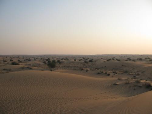 Dubai   by luigig