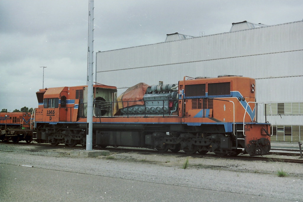D1565 by roreeves