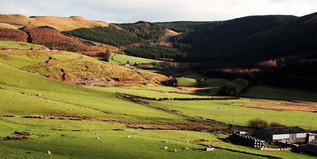Cwmergyr a Llys Arthur, Eisteddfa Gurig, Ceredigion