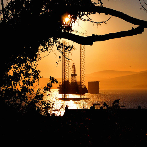 sunset tree square scotland rig oil cromarty firth gloaming