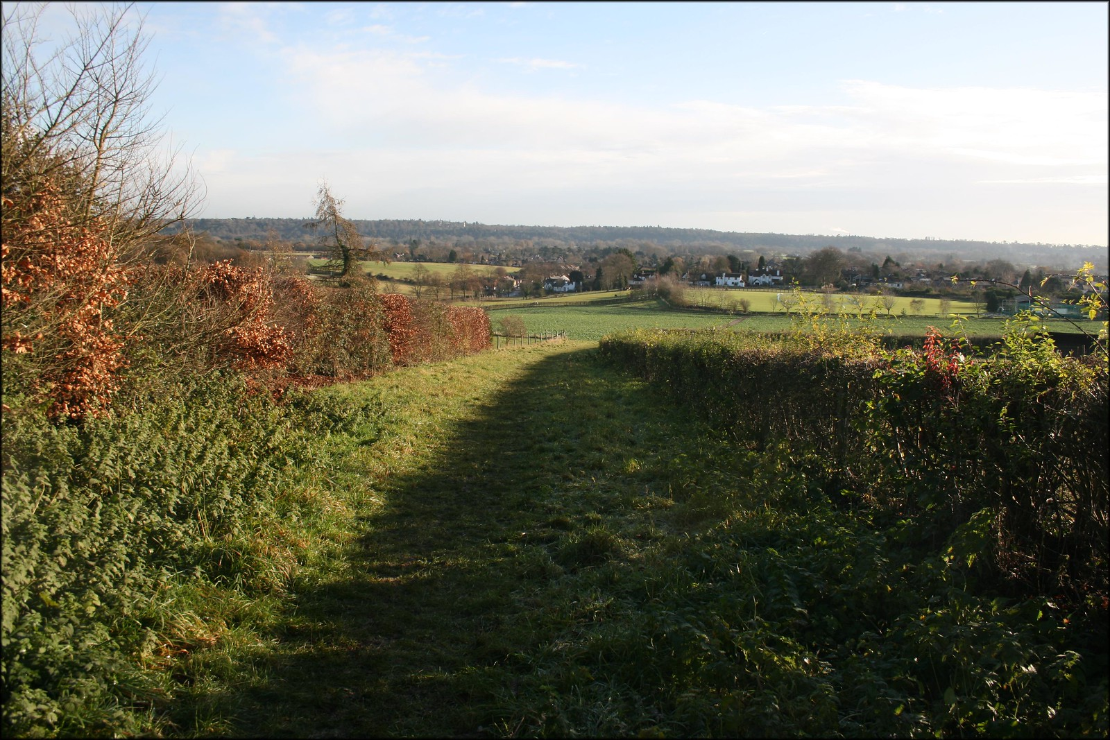 The Thames valley near Cookham