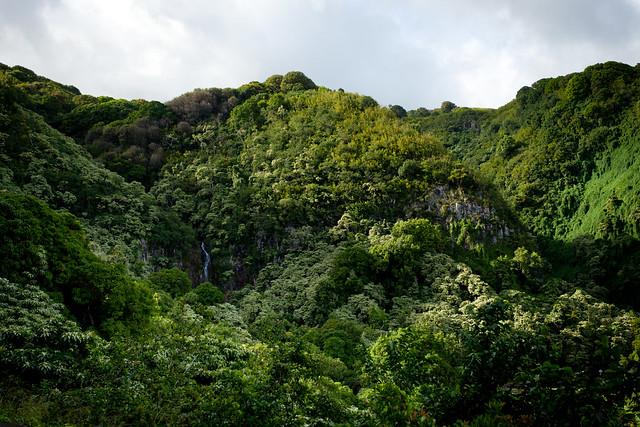 Haleakala National Park 4979