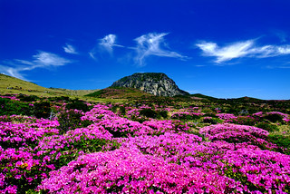 Halla Mountain in Jeju-do | by KOREA.NET - Official page of the Republic of Korea
