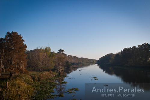 river landscape view bayou louisana