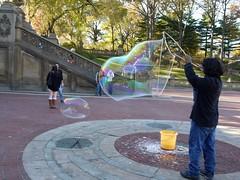 金, 2010-11-12 14:03 - Central Park 紅葉