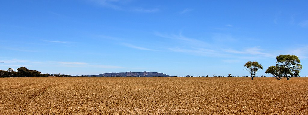 A Land Of Sweeping Plains Mount Arapiles From Just