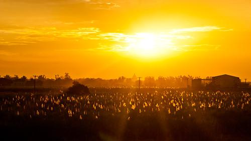 sunset pampanga featured