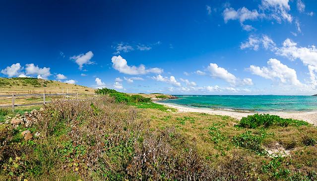 20. Beach Panorama
