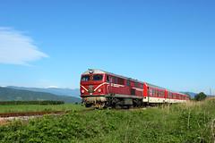 The Small Train