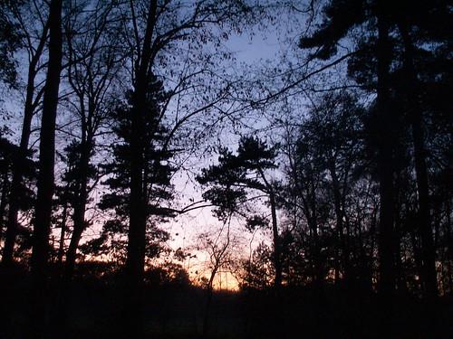 Sonnenuntergang vom grauen Himmelsstrand über der Gruft der Völker die Jahre in blutiger Erde begraben, voll schwarzer, gemästeter Raben des Todes, lachst du so herrlich über die Kühnen dem Tode geweihten 00219