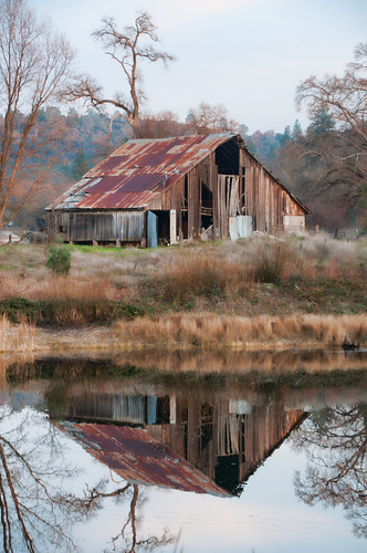 california old trees usa brown sun color reflection water grass barn rural landscape photography nikon rust december day dry scene late oaks fairplay d90 thechallengefactory pinnaclefeb22012
