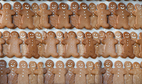 Gingerbread at Longwood   by photofarmer