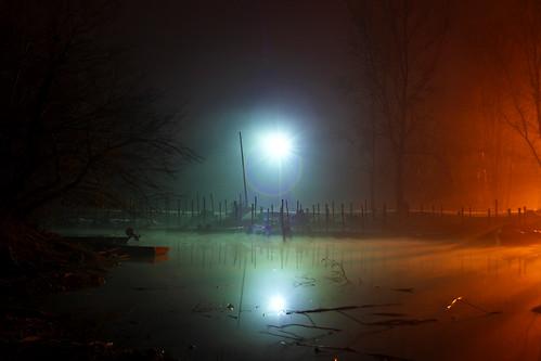 """alberi night canon ticino fiume natura barche flare luci nebbia inverno riflessi freddo lampioni ayala rami specchio 20s notturno vigevano lomellina foschia cavalletto detriti lungaesposizione riflettere lanca canon7d olétusfotos """"flickraward"""" uniqueaward flickrunitedaward claudio61 virgiliocompany musictomyeyeslevel1 diverseilluminazioni"""