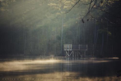 morning winter light lake nature water sunrise canon landscape golden nc dock rays pinetrees 450d crepescular risingmist imaginefotocom naturearttnc12