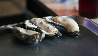 Gulf Coast Oysters   Wintzell's Oyster House   by donireewalker