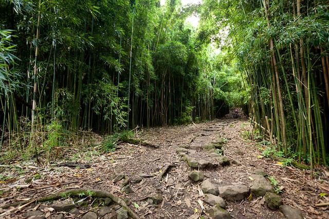 Haleakala National Park 4972