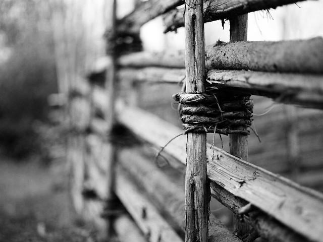 Old fence at Ludde´s cabin w. Mamiya M645