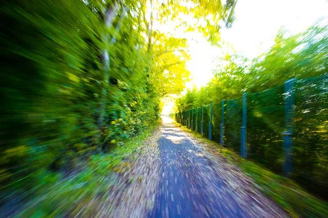 Arakawa Cycling Road