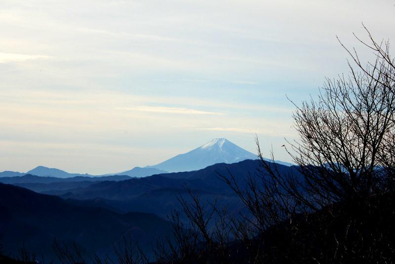 川乗山から富士山