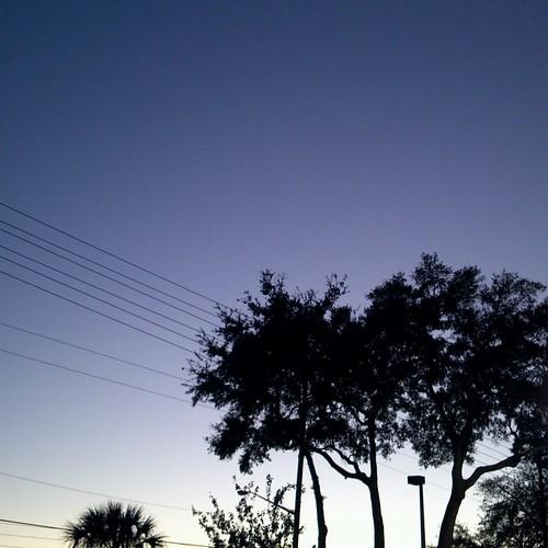 sunset project unitedstates florida dusk powerlines hudson oaktrees 366 flickrandroidapp:filter=none