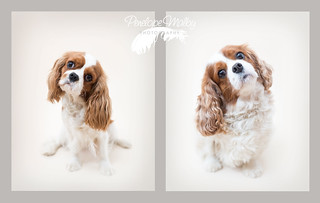 Rosie & Lily | by Penelope Malby Photography