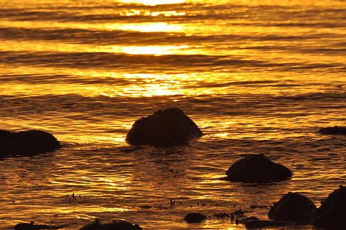 ocean morning november reflection beach water sunrise gold golden nikon rocks waves connecticut newengland northeast groton southeastern 2011 grotonlongpoint explored d5000 eskerpoint mygearandme mygearandmepremium mygearandmebronze mygearandmesilver