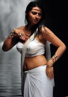 wet-tamil-actress-navel | by hotmona4u