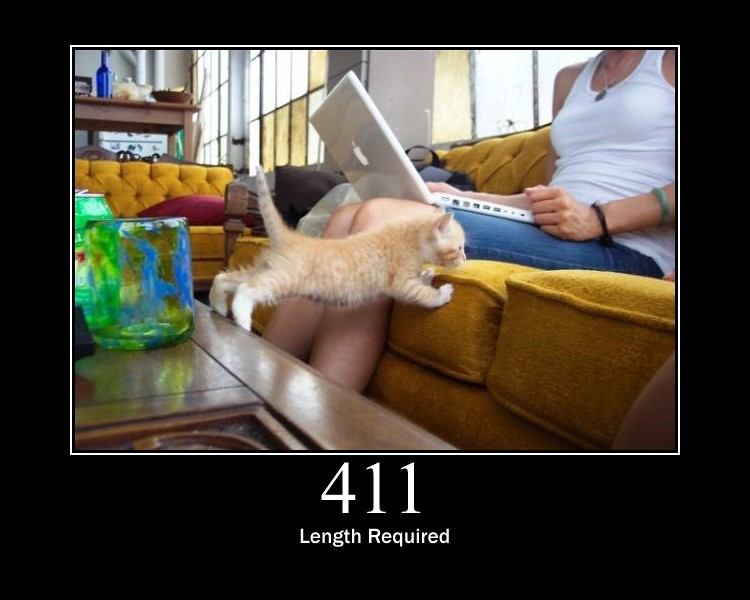 411 - Length Required | The request did not specify the leng\u2026 | Flickr