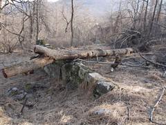 日, 2011-12-25 13:46 - 1777 trail