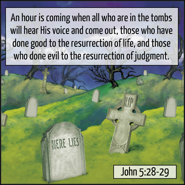 Image result for John 5:28-29