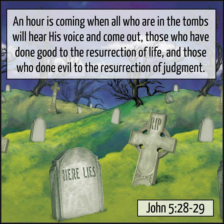Image result for John 5:28-29