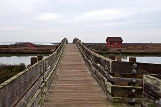 Footbridge at SFBNWR   by donjd2