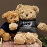 2016 NTU畢業熊(銀灰)