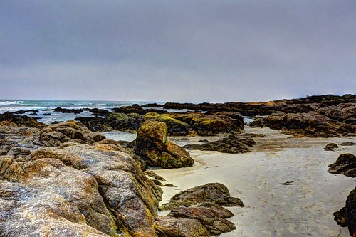 asilomarstatebeach beach sand rocks water pacificocean pacificgrove montereybay montereypeninsula waterpictorial wet joelach