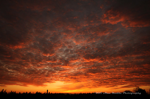 the sky was on fire tonight | by supermoe (Alan Moditz)
