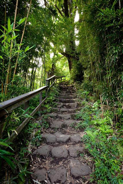 Haleakala National Park 4971