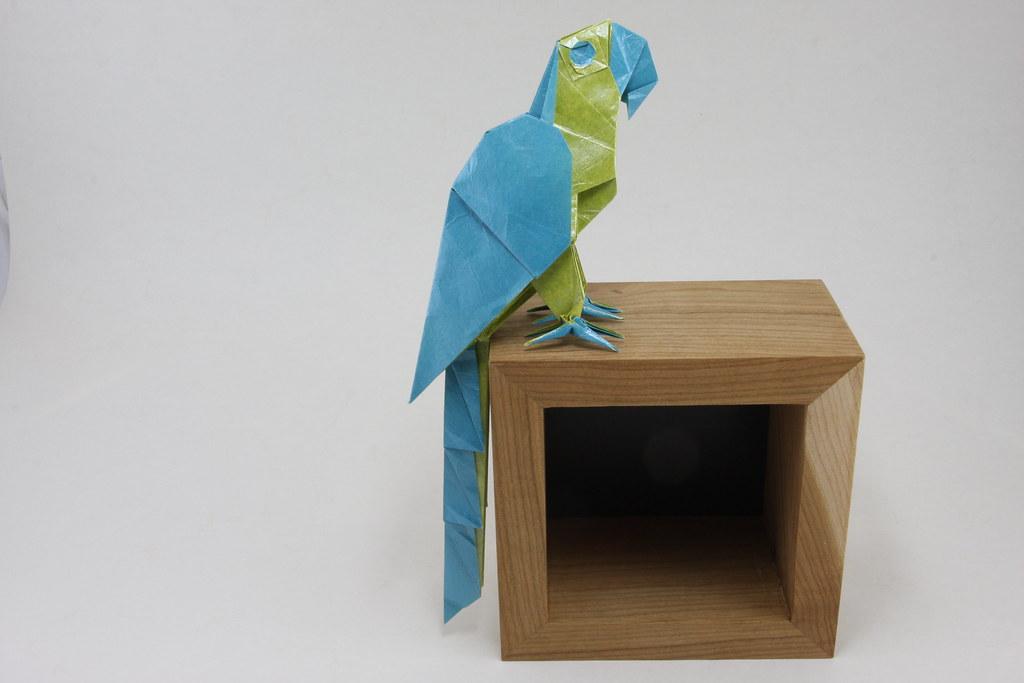 Origami Macaw Parrot Tutorial (Manuel Sigro) | Origami, Perroquet ... | 683x1024