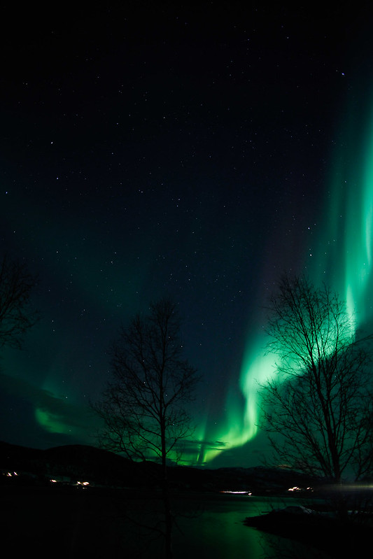 AuroraBorealisAursfjord-3