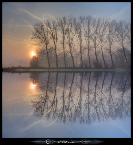trees mist water fog sunrise canon reflections belgium belgique belgië symmetry erlend muizen 24105mm 60d erroba robaye masterclasselite