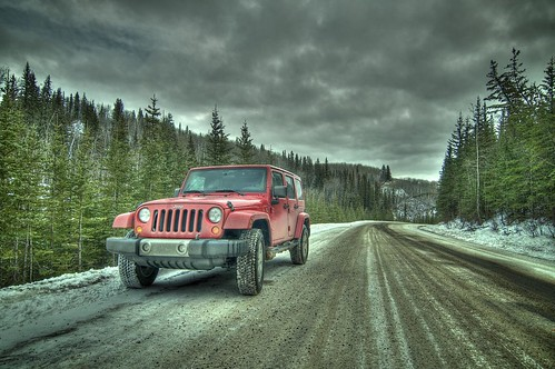 Forestry Jeep
