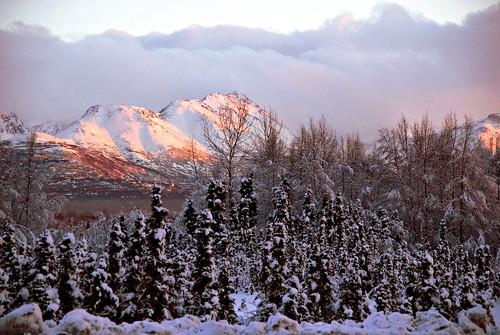 snow alaska day anchorage fleursetpaysages