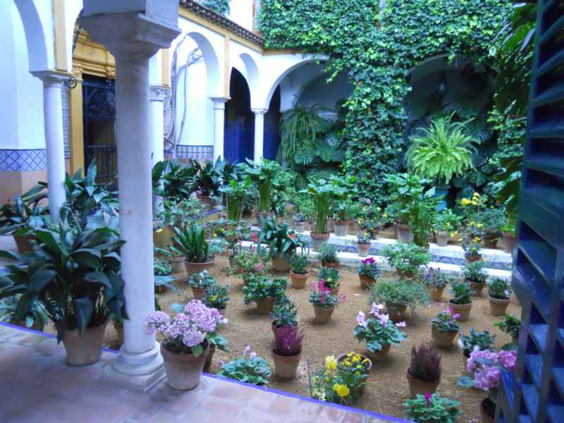 Patio andaluz dedicado a Washington Irving 6