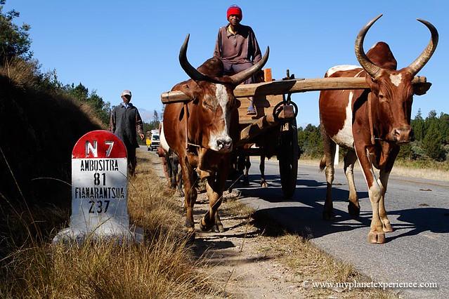 Madagascar - N7 Traffic...