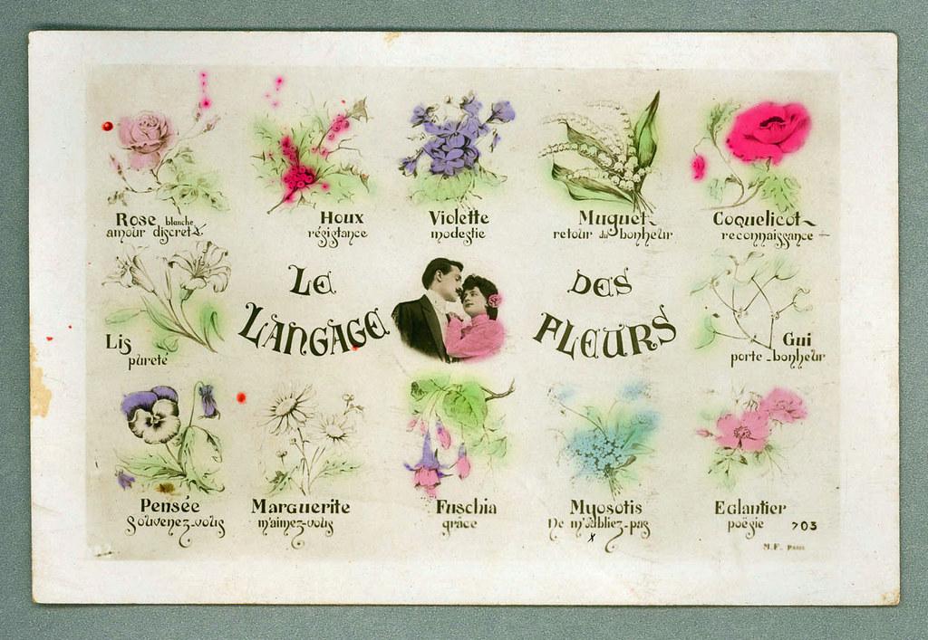 Le langage des fleurs   Collection des cartes postales de la…   Flickr