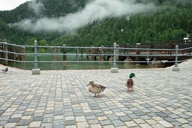 24.06.2009 - Königsee - Schweiz SDIM0287