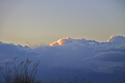 light sky cloud grass sunrise