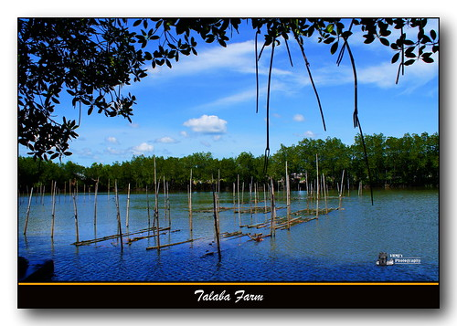 travel blue nature water beauty landscape peace sony philippines cebu alpha550 vrmj