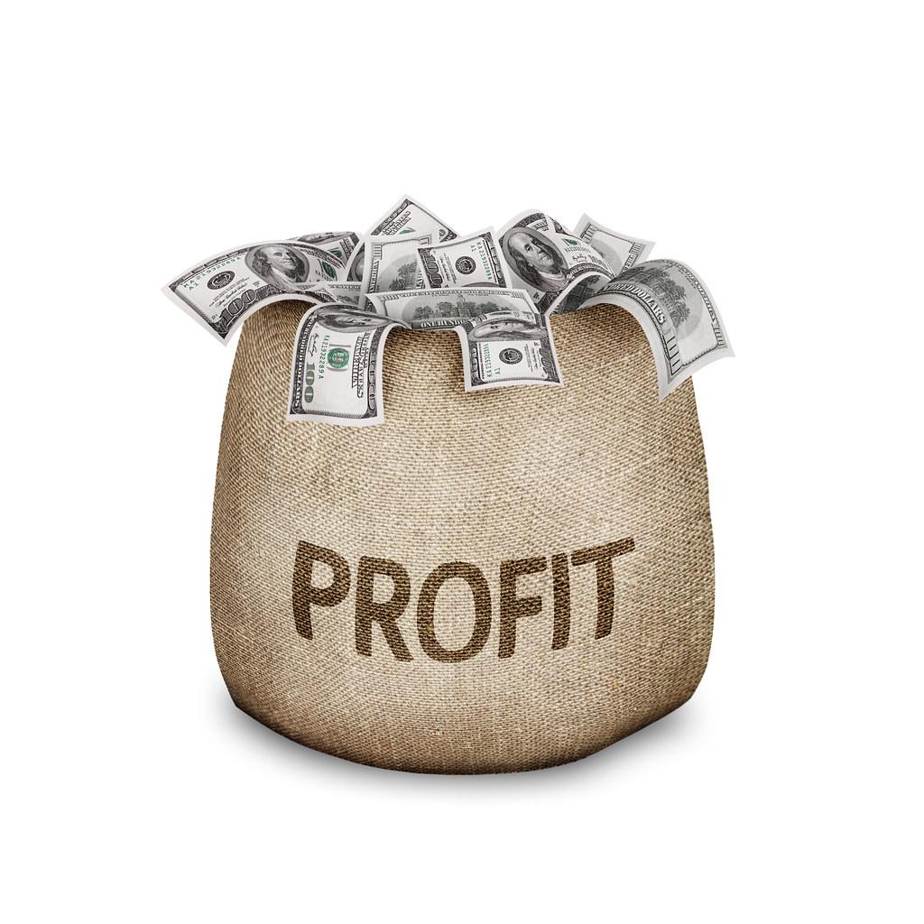 Profit explanation