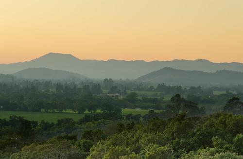 california trees sunset mountains green nature northerncalifornia yellow landscape twilight nikon wine hill fromabove valley napavalley napa tele 55200 mountainridge exposureblending nikon55200 d7000 nikond7000 andreaskoeberl