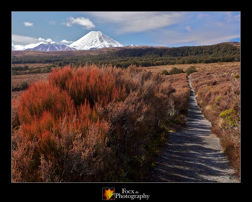 Tongariro National Park XI | by Focx Photography